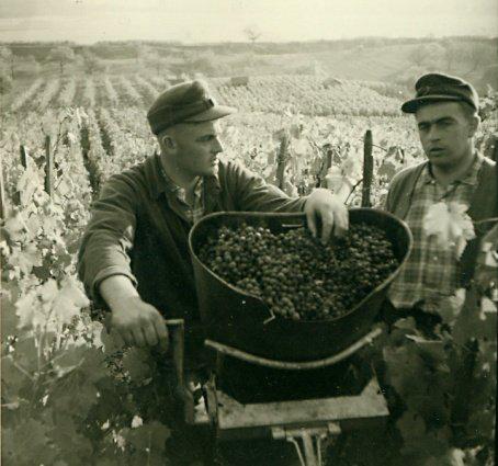 Gottlieb und Ernst Baumgärtner